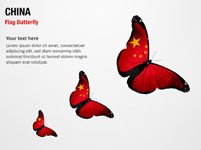 China Flag Butterfly
