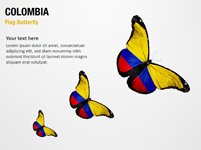 Colombia Flag Butterfly