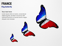 France Flag Butterfly
