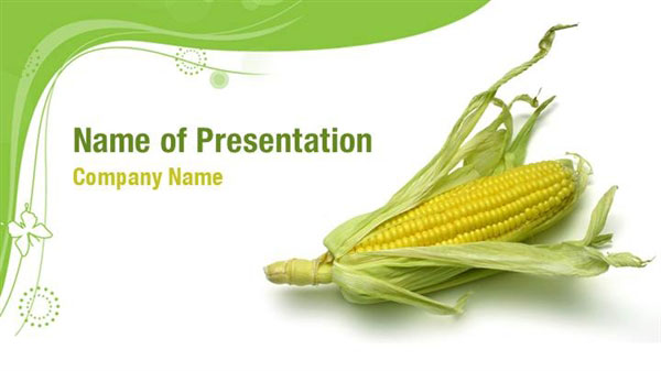 Corn Cob PowerPoint Templates