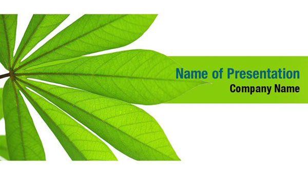 Fresh Green Plant Leaves Powerpoint Templates Fresh Green Plant Leaves Powerpoint Backgrounds Templates For Powerpoint Presentation Templates Powerpoint Themes