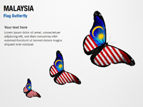 Malaysia Flag Butterfly