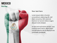 Mexico Fist Flag