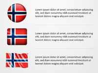 Norway Flag Icons