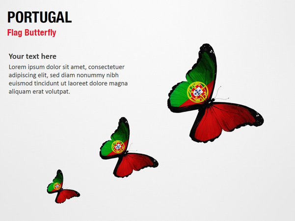 Portugal Flag Butterfly