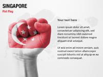 Singapore Fist Flag