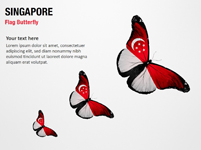 Singapore Flag Butterfly