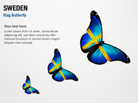 Sweden Flag Butterfly