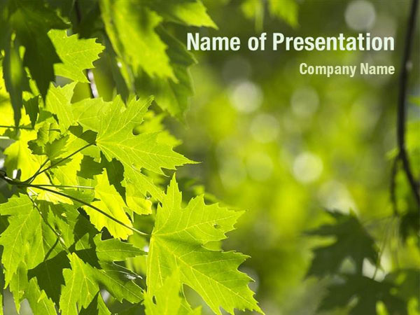 Maple Powerpoint Templates