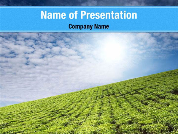 Tea Plantation Powerpoint Templates Tea Plantation