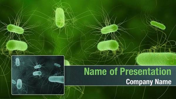 Bacterial Infection Powerpoint Templates Bacterial Infection Powerpoint Backgrounds Templates For Powerpoint Presentation Templates Powerpoint Themes
