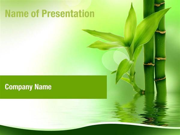 Zen Bamboo Forest Powerpoint Templates Zen Bamboo Forest Powerpoint Backgrounds Templates For Powerpoint Presentation Templates Powerpoint Themes